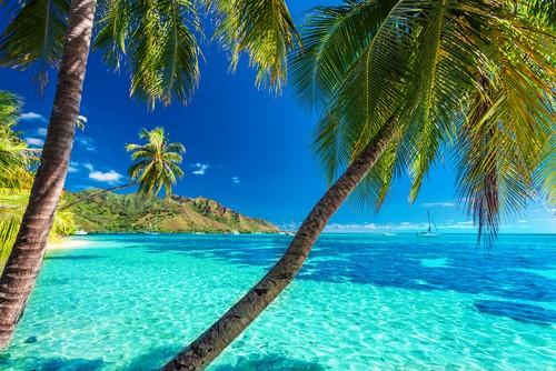 Cruise over Stillehavet med Franske Polynesia