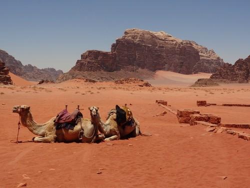 Wadi Rum, Aqaba, Jordan, Fred. Olsen Travel