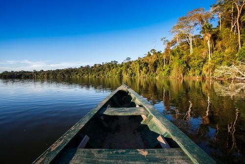 Amazonas, Brasil (2)