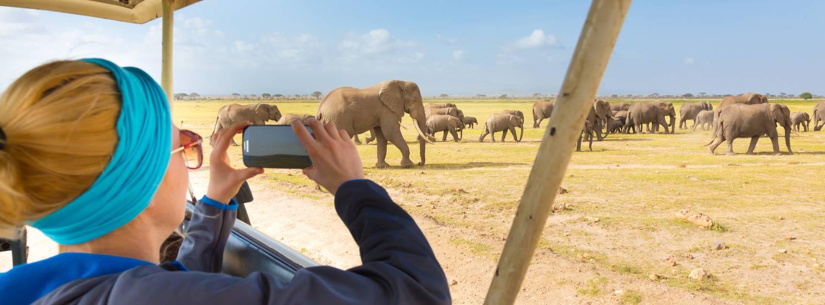 Cruise Langs Afrikas Vestkyst Til S 248 R Afrika Og Madagaskar Fred Olsen Travels
