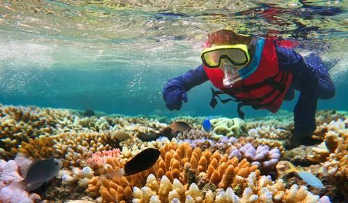 Great Barrier Reef, Australia Fred. Olsen Travel