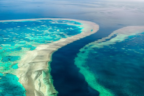 Great Barrier Reef, Australia Fred. Olsen Travel