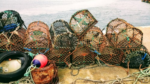 Fishing creels, Kirkwall Harbour, Orkney Islands, Scotland, United Kingdom