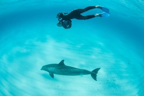 Turks and Caicos, British Virgin Islands