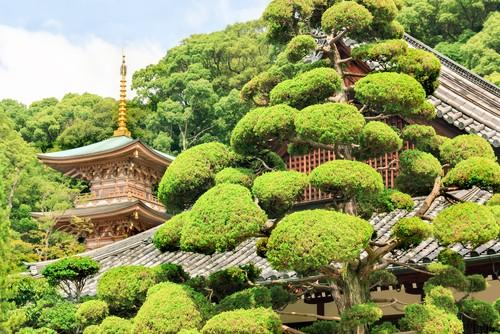 Suma Temple, Kobe, Japan