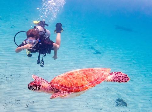 St. Marteen, Netherlands Virgin Islands