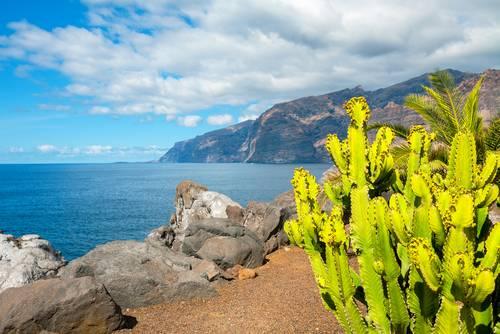 Tenerife Kanariøyene Spania