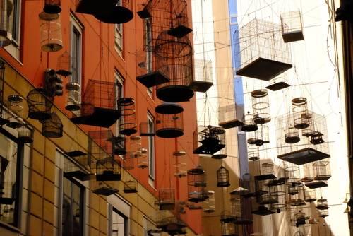 Bird cage alley, Sydney, Australia