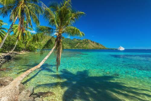 Palmetre, Moorea, French Polynesia