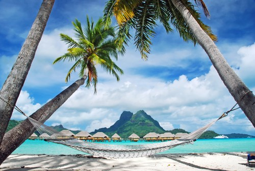 Palmer m/hengekøyer, Bora Bora french Polynesia