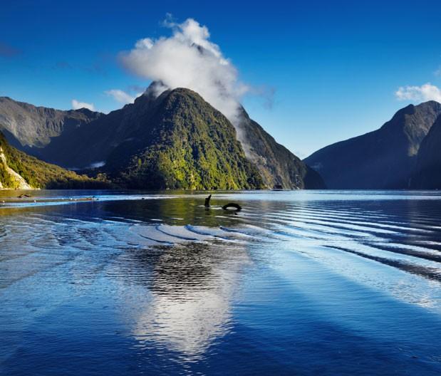 Jorden Rundt New Zealand